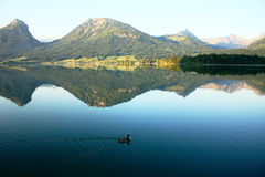 Alpine lake. Morning in an alpine lake Stock Image