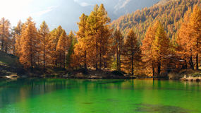 Alpine Lake in autumn, Breuil-Cervinia, Italy Stock Photos