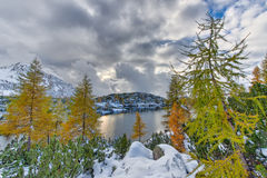 Alpine lake in autumn with the first snow Stock Photos