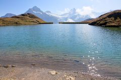 Alpine lake Bachalpsee in Jungfrau region Royalty Free Stock Photo