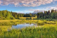 Alpine Lake in Bavaria stock images