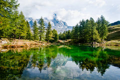 Alpine lake - Cervino Matterhorn. A beautiful view of Lake Blue, a high altitude alpine lake near Breuil-Cervinia. Evergreen pines are reflected in the tranquil Stock Photo