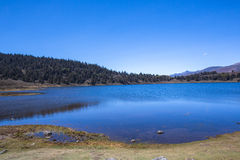 Alpine lake. Merida Venezuela Stock Photography