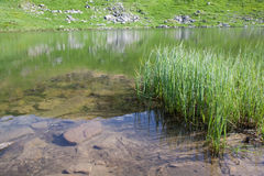 Alpine lake Nesamovyte on summer mountains Royalty Free Stock Photo