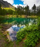 Alpine alpine lake in a pine forest. Alpine lake in a pine forest in Rhemes Notre Dame, Valle dAosta, Italy royalty free stock photography