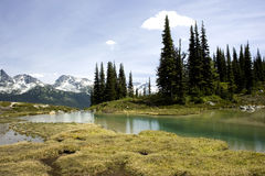 Alpine Lake Vista, Whistler, Canada Stock Photos