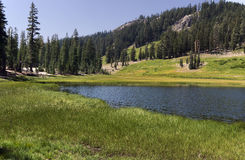 Alpine Lake and wide meadow Royalty Free Stock Photography