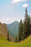 Alpine landscape in Bavaria, Germany. Beautiful alpine landscape, Bavaria, Germany Royalty Free Stock Photography