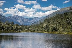 Alpine landscape with forest, lake, cloud reflection. New zealand nature Royalty Free Stock Images