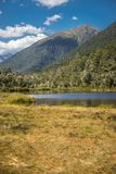 Alpine landscape with forest, lake, cloud reflection. New zealand nature Stock Photography