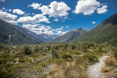 Alpine landscape with forest, lake, cloud reflection. New zealand nature Stock Photos