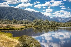 Alpine landscape with forest, lake, cloud reflection. New zealand nature Stock Photo