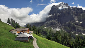 Alpine landscape with house on slope of mountain, Grindelwald - Switzerland Stock Image