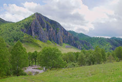 Alpine landscape with a high cliff and the river Royalty Free Stock Image