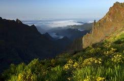 Free Alpine Landscape In Madeira Island Royalty Free Stock Photos - 55639928