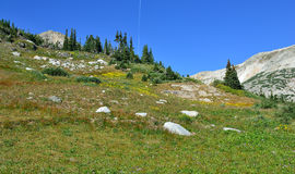 Free Alpine Landscape In The Medicine Bow Mountains Of Wyoming Royalty Free Stock Photo - 89761965