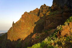 Alpine landscape in Madeira Island Royalty Free Stock Images