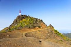 Alpine landscape in Madeira Island Royalty Free Stock Image