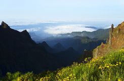 Alpine landscape in Madeira Island stock photos