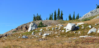Alpine landscape in the Medicine Bow Mountains of Wyoming. In summer stock photos