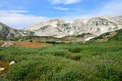 Alpine landscape in the Medicine Bow Mountains of Wyoming Stock Photos
