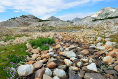 Alpine landscape in the Medicine Bow Mountains of Wyoming. In summer stock images