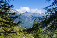 Alpine landscape Royalty Free Stock Image