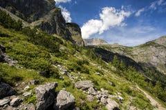 Alpine Landscape at Muehlbach am Hochkoenig in Summer Stock Images