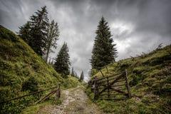 Alpine Landscape at Muehlbach am Hochkoenig in Summer Royalty Free Stock Photos