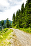 Alpine landscape with road Stock Photography