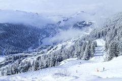 Skiing through alpine forest in French winter sport resort royalty free stock image