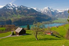Alpine landscape in spring Royalty Free Stock Photo