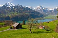 Alpine landscape in spring. (Walensee, Switzerland Royalty Free Stock Photo