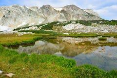 Alpine Landschaft in den Medizin-Bogen-Bergen von Wyoming Lizenzfreie Stockfotografie