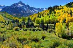 Alpine Landschaft der gelben Espe und des Schnees bedeckte Berge während der Laubjahreszeit Stockfoto