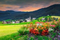 Alpine Landschaft des Frühlinges mit bunten Blumen und grünen Feldern, Österreich Stockfotos