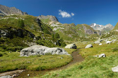 Alpine Landschaft des Sommers Stockfotos