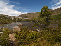 Alpine Landschaft im Nationalpark des mt-Feldes Stockfotografie
