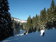 Alpine Landschaft im Winter unter frisch schneiendem Schnee Stockfotos