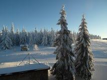 Alpine Landschaft im Winter unter frisch schneiendem Schnee stockfoto