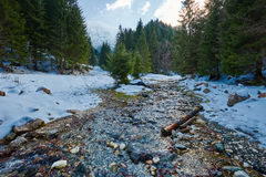 Alpine Landschaft mit Fluss und Wald Stockbilder