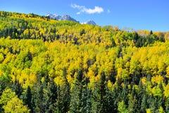 Alpine Landschaft von Colorado während der Laubjahreszeit Stockbild