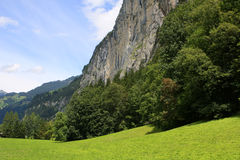 Alpine meadow. Green alpine meadow near Trummelbach Falls, Switzerland Stock Images