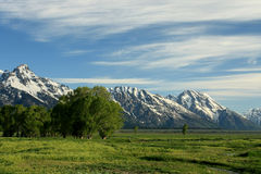 Alpine Meadow. Pastoral scene of alpine meadow against snow covered mountains on early spring morning royalty free stock photography