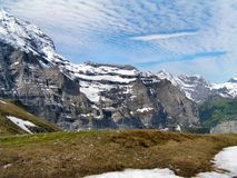 Alpine meadow in central Switzerland. Royalty Free Stock Images