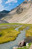 Alpine meadow and creek Royalty Free Stock Images