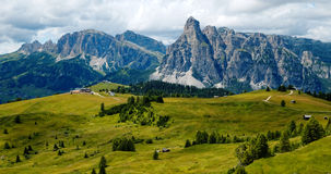Alpine meadow and Dolomites Royalty Free Stock Photos