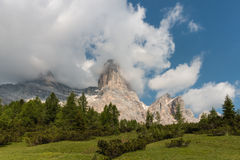 Alpine meadow in Dolomites Royalty Free Stock Images