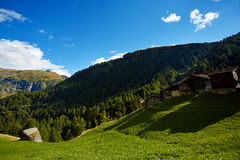 Alpine meadow with houses Stock Image
