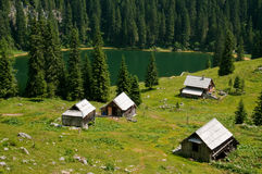 Alpine meadow with lake Stock Photography